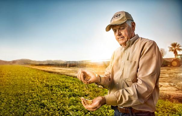 Super Bowl parallax farmer